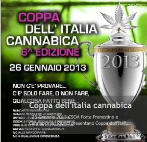 Cannabis Cup VI ed.
