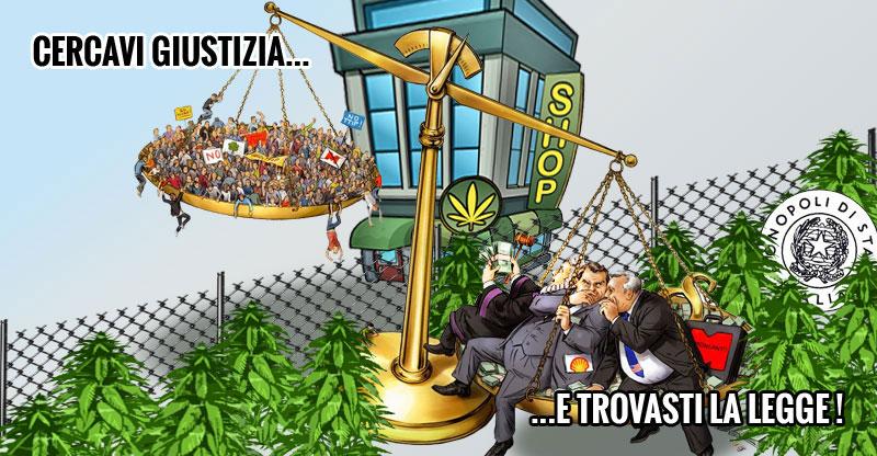"""Cannabis """"legale""""? ...Ma a quale prezzo?!!"""